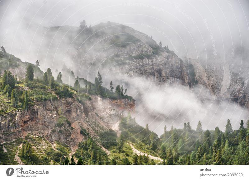 Nebel in den Dolomiten Natur Ferien & Urlaub & Reisen Sommer Baum Landschaft Ferne dunkel Berge u. Gebirge Gras Freiheit Stimmung Felsen Regen Ausflug wandern