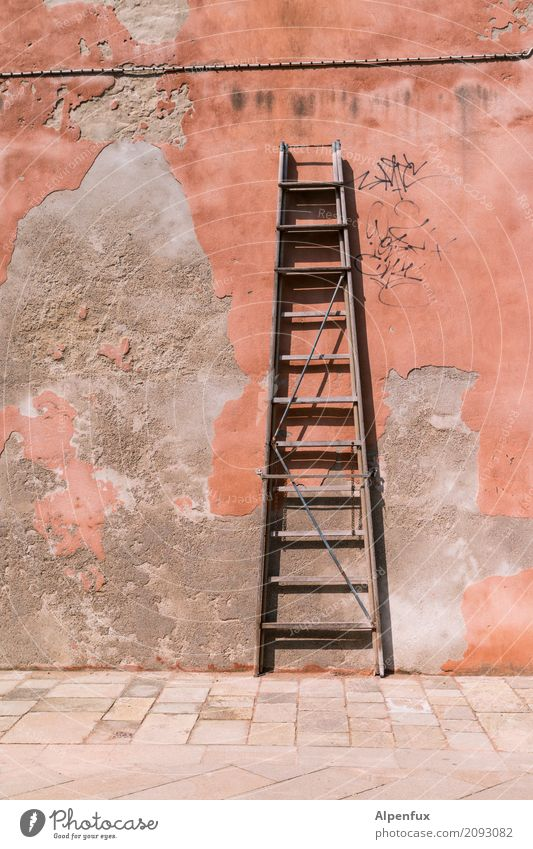 Venezianische Karriereleiter Leiter Graffiti stehen alt Stadt Beginn Erfolg Ewigkeit Glaube Religion & Glaube Zufriedenheit Hoffnung Problemlösung Neugier