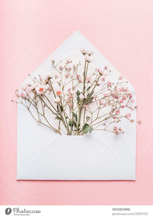Geöffneter Briefumschlag mit Blumen Natur Pflanze Lifestyle Liebe Hintergrundbild feminin Stil Feste & Feiern rosa Design Dekoration & Verzierung Geburtstag