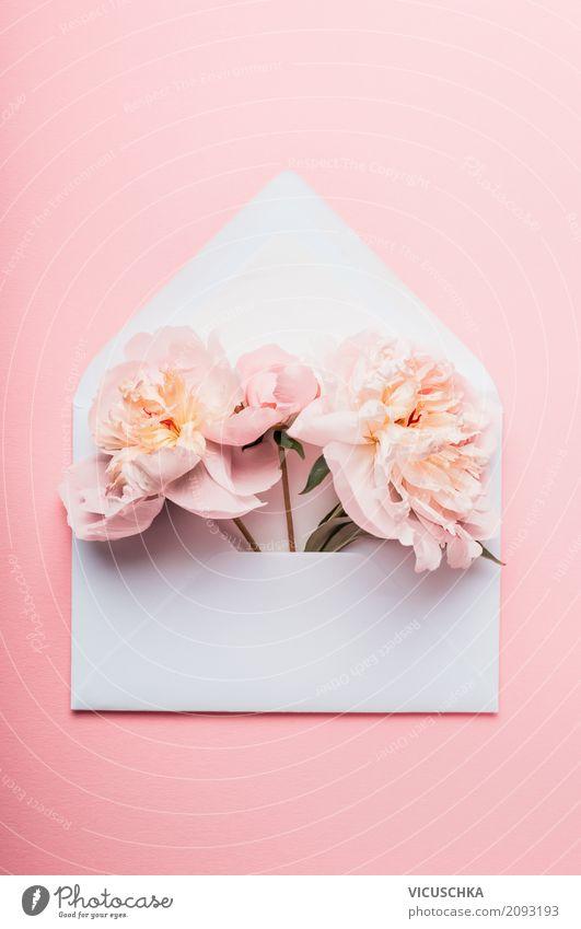 Geöffneter BriefUmschlag mit Pfingstrosen Pflanze Blume Blatt Lifestyle Blüte Liebe Stil Feste & Feiern rosa Design Freizeit & Hobby Dekoration & Verzierung