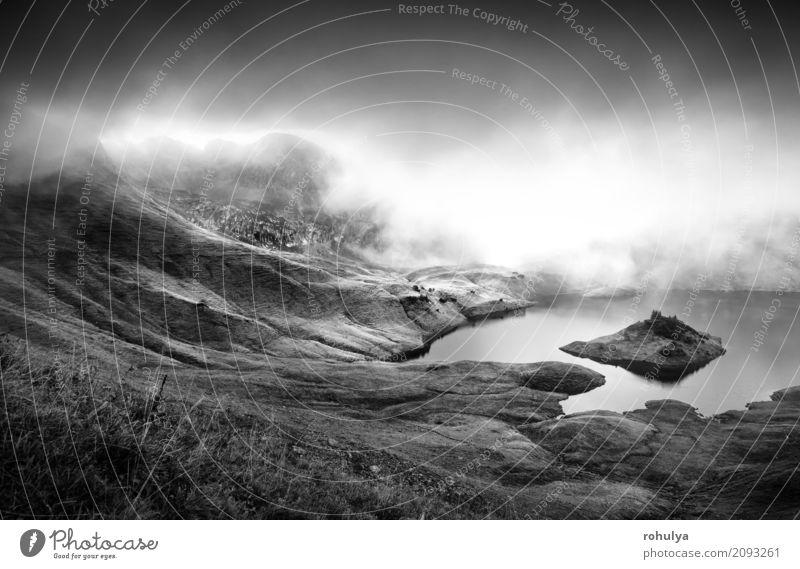 Nebel über alpinen See in Bergen Berge u. Gebirge Natur Landschaft Wolken Sonnenlicht Herbst Wetter Wiese Hügel Alpen Gelassenheit Wasser Grasland Aussicht