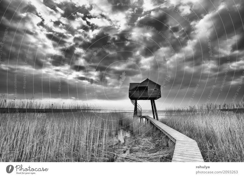 Weg zum hölzernen Aussichtsturm, Dollard, die Niederlande Himmel Natur Landschaft Haus Wolken Wege & Pfade Küste Gebäude Holz Deutschland Wetter beobachten