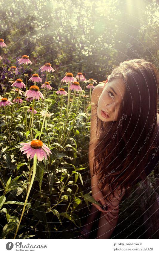 WE DREAM Mensch Natur Jugendliche Blume feminin Blüte Garten Haare & Frisuren rosa stehen lang brünett langhaarig Junge Frau Behaarung Perspektive