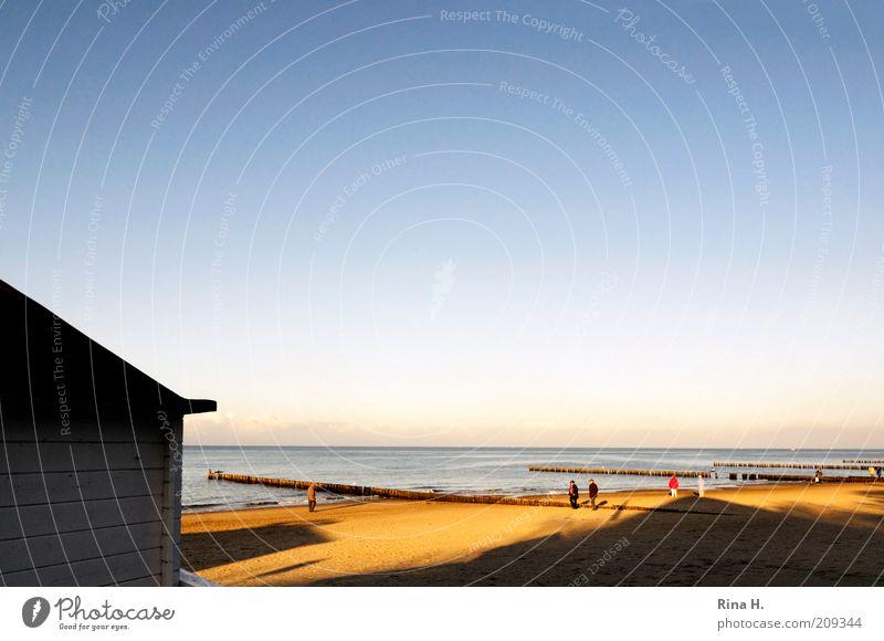 November am Meer II Natur Himmel Meer blau Strand Ferien & Urlaub & Reisen gelb Erholung Herbst Gefühle Glück Sand Landschaft Zufriedenheit hell gehen