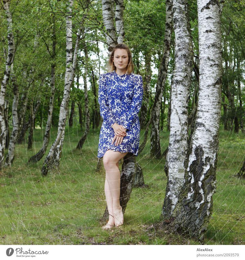 rückhalt schön harmonisch Wohlgefühl Ausflug Junge Frau Jugendliche Beine 18-30 Jahre Erwachsene Landschaft Sommer Schönes Wetter Baum Birkenwald Kleid Barfuß
