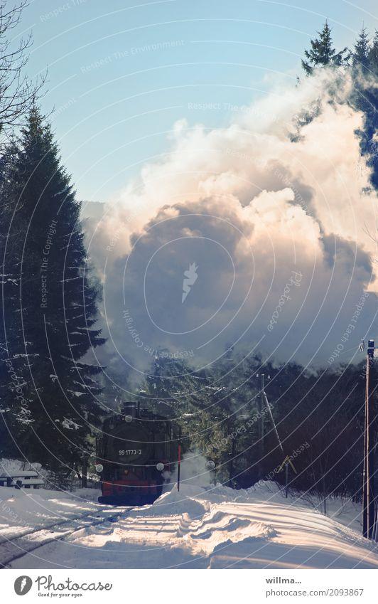 Dampflok im winterlichen Erzgebirge Dampflokomotive Schnee Ferien & Urlaub & Reisen Winter Schienenverkehr Bahnfahren Eisenbahn Lokomotive Personenzug Mobilität