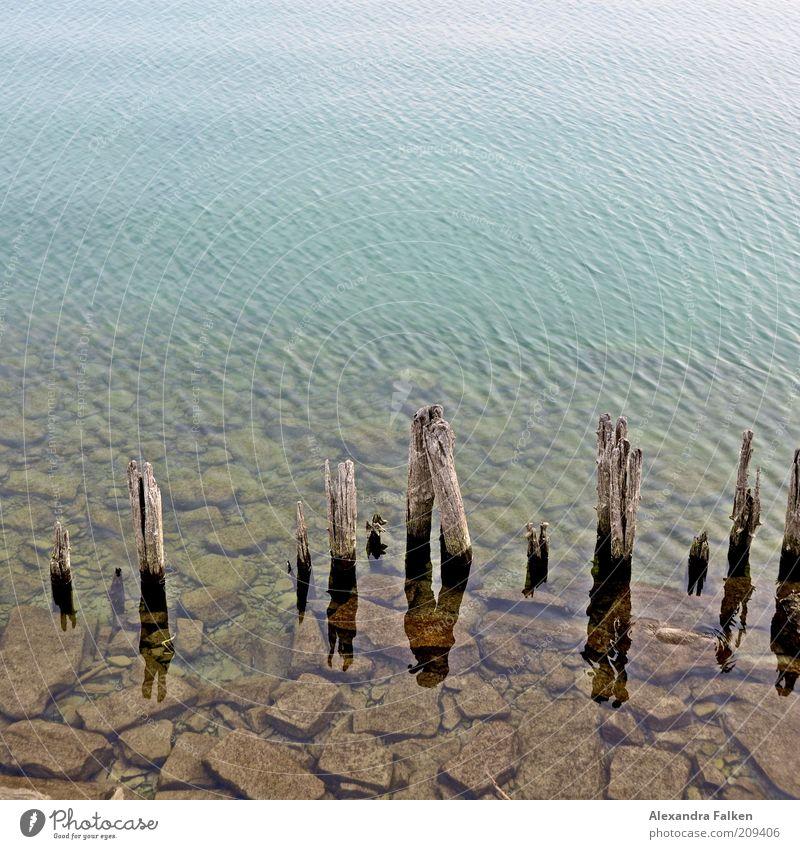 Bodensee Umwelt Natur Wasser Seeufer Stein Pfosten Holz Strukturen & Formen Farbfoto Textfreiraum oben Buhne Verfall verfallen Zahn der Zeit alt Altholz