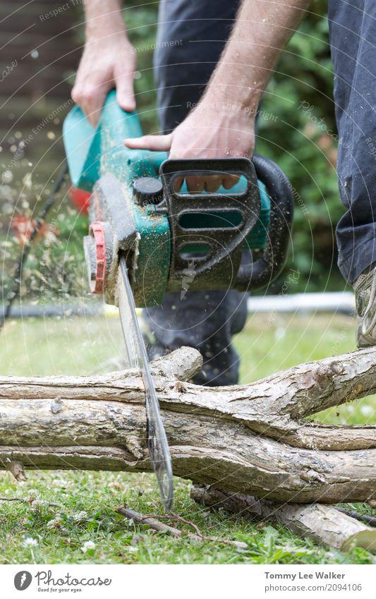 Erwachsener Mann schneidet Zweig unter Verwendung der Kettensäge Garten Arbeit & Erwerbstätigkeit Beruf Industrie Werkzeug Hand Baum Wald Holz Sicherheit