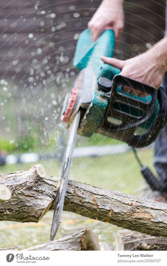 Kettensäge in Aktion Garten Arbeit & Erwerbstätigkeit Beruf Industrie Werkzeug Mann Erwachsene Hand Baum Wald Holz Sicherheit Waldarbeiter anketten Kraft