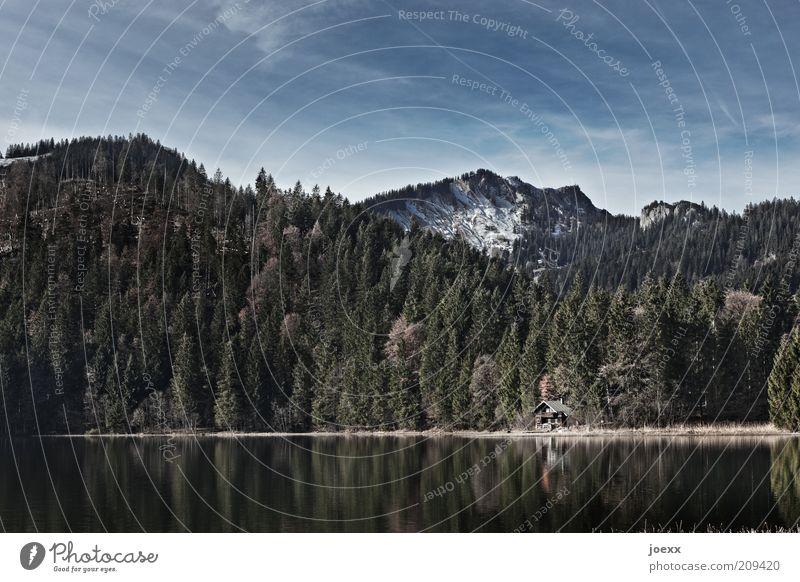 Haus am See Natur Landschaft Himmel Sommer Schönes Wetter Wald Berge u. Gebirge Schneebedeckte Gipfel Seeufer Menschenleer alt blau grün ruhig Erholung Umwelt