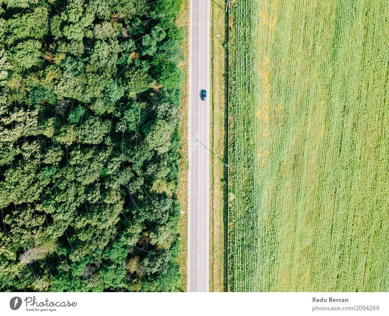 Luft-Drohne-Ansicht von beweglichen Autos auf Landstraße Natur Ferien & Urlaub & Reisen Sommer Farbe grün Baum Landschaft Ferne Wald Umwelt Straße Wege & Pfade
