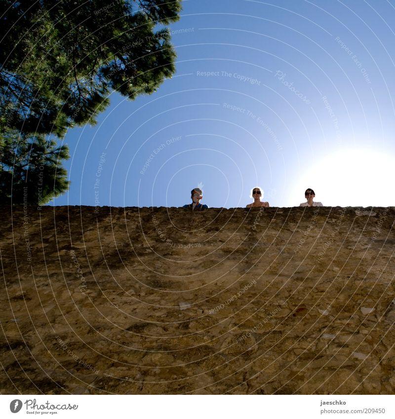 Drei, wo es geschafft haben Freundschaft 3 Mensch 18-30 Jahre Jugendliche Erwachsene Wolkenloser Himmel Sonne Schönes Wetter Baum Mauer Wand beobachten