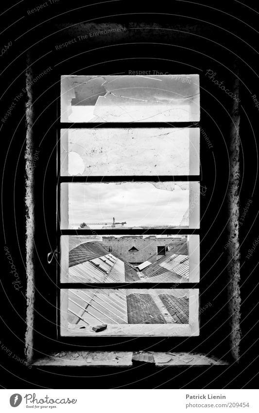 Fenster über den Dächern Menschenleer Bauwerk Gebäude Architektur Dach alt Blick dreckig dunkel kaputt Schwarzweißfoto Innenaufnahme Schatten Kontrast