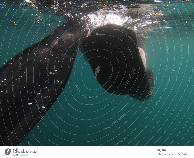flossen hoch Freizeit & Hobby Ferien & Urlaub & Reisen Tourismus Umwelt Natur Urelemente Wasser Meer Schwimmhilfe Bewegung Bewegungsenergie schwarz Farbfoto