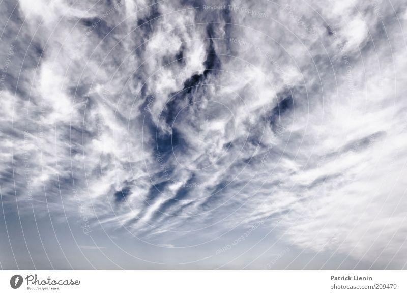 Is there a ghost Umwelt Natur Landschaft Himmel Wolken Sommer Klima Wetter Schönes Wetter Wolkenhimmel Wolkendecke Wolkenfeld Wolkenband geheimnisvoll
