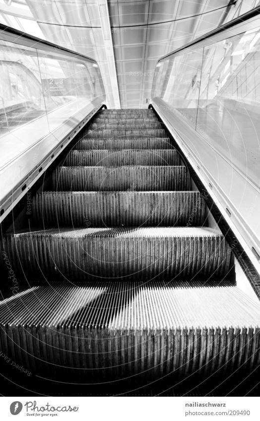 Aufwärts Menschenleer Bahnhof Treppe Rolltreppe kalt grau schwarz weiß Schwarzweißfoto Innenaufnahme Tag Schatten Starke Tiefenschärfe aufwärts Glas modern