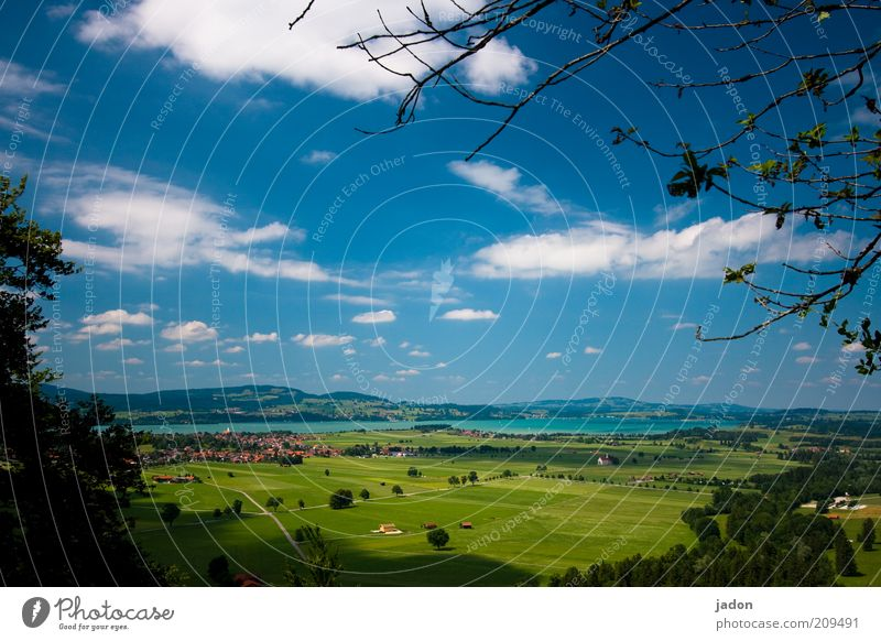 ausblick. grün blau Sommer Ferne Wiese See Landschaft Feld Umwelt Ast Idylle Hügel Weide Schönes Wetter Blick