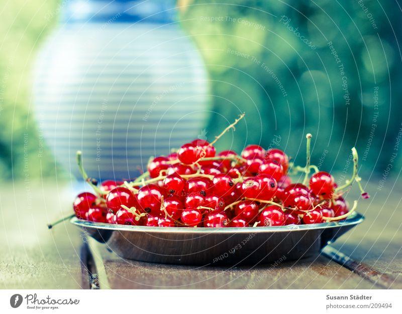 bedien Dich! glänzend Lebensmittel Frucht Streifen lecker Ernte Teller Furche Beeren Vase Dessert Brunch Büffet sommerlich Speise Ernährung