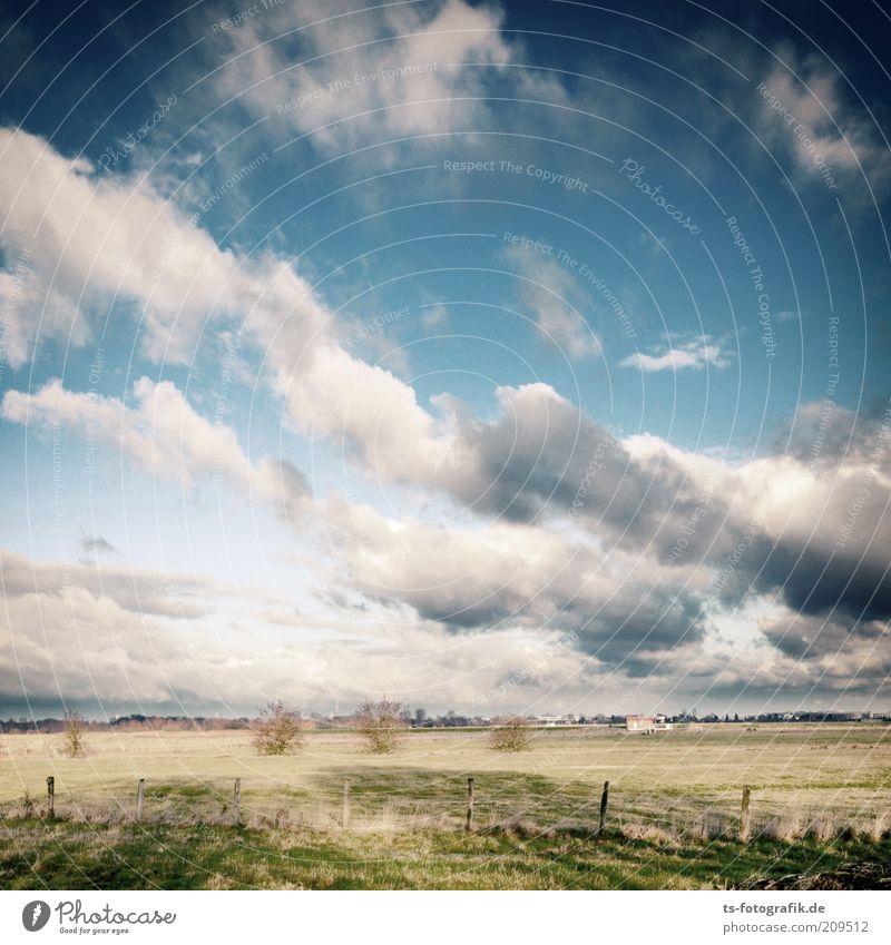 nordic Wolking Himmel Natur blau weiß grün Baum Ferien & Urlaub & Reisen Pflanze Wolken Ferne Erholung Umwelt Wiese Landschaft Herbst Freiheit