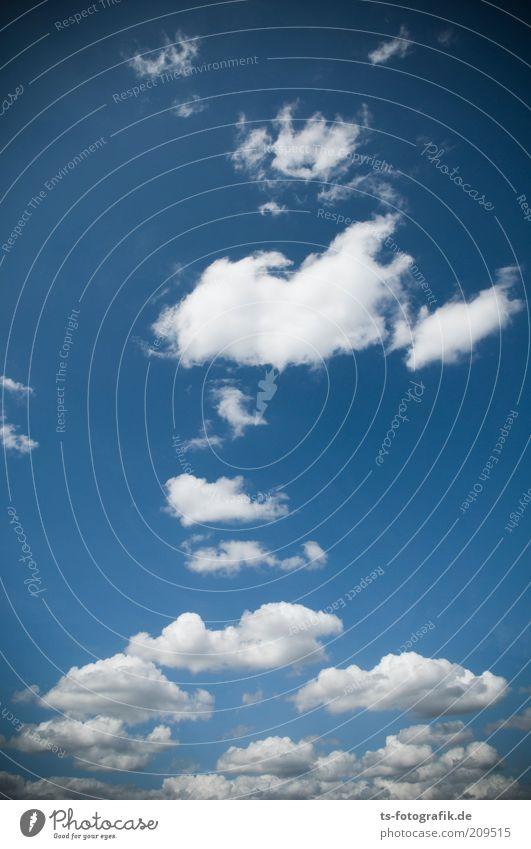 nordic Wolking II Natur schön Himmel weiß blau Wolken oben grau Luft Wind Wetter Umwelt hoch ästhetisch weich Klima