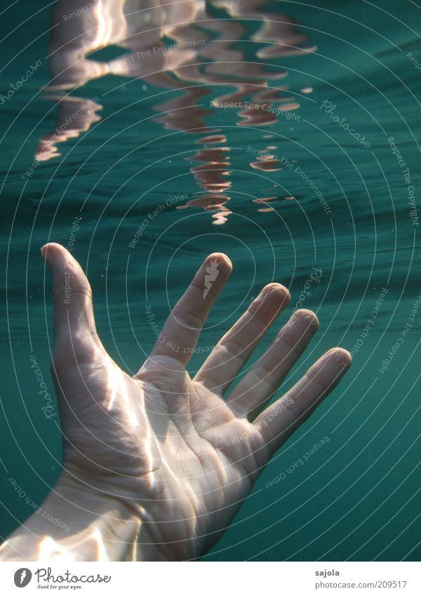 greifbar nah Mensch Hand Urelemente Wasser Meer grün greifen Lebenslinie Finger Durchbruch Farbfoto Unterwasseraufnahme Hintergrund neutral Tag