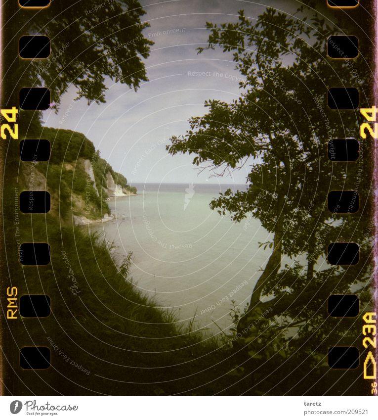 Es gibt kein Da Umwelt Natur Landschaft Ostsee Insel Rügen Fernweh Freiheit Kettenradlöcher Filmperforation Küste Klippe Kreidefelsen Farbfoto Gedeckte Farben