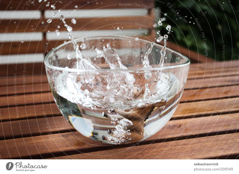 schuessel der zweite Esel fallen Schalen & Schüsseln Wasser Wassertropfen platschen Glas Farbfoto Außenaufnahme Nahaufnahme Menschenleer Tag Zentralperspektive