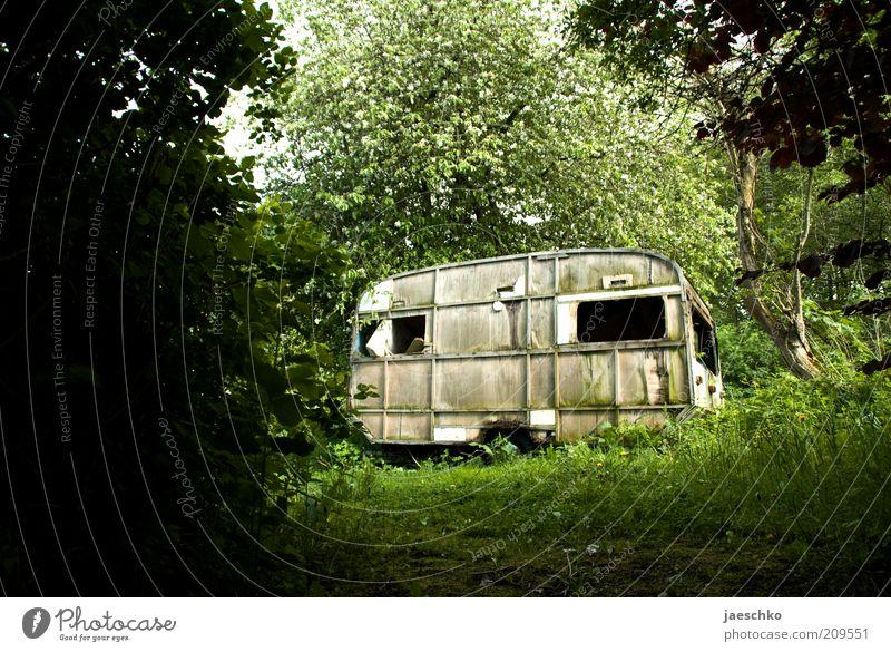 Urlaub vorbei Baum Gras Sträucher Moos Garten Wald Wohnwagen alt dunkel trist grün Endzeitstimmung Surrealismus Ferien & Urlaub & Reisen Vergänglichkeit Zeit