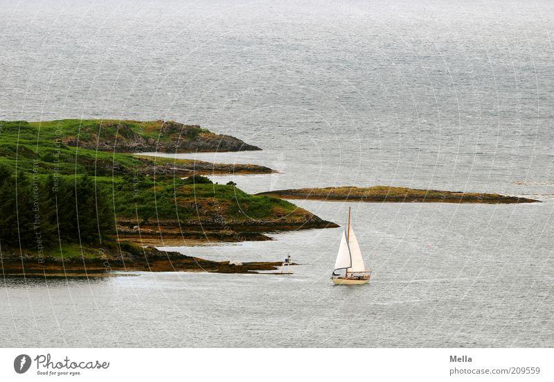 Little Hommage to Edward Hopper Natur Wasser Baum Ferien & Urlaub & Reisen Meer Freude Erholung Umwelt Landschaft Gefühle Freiheit Küste Stimmung