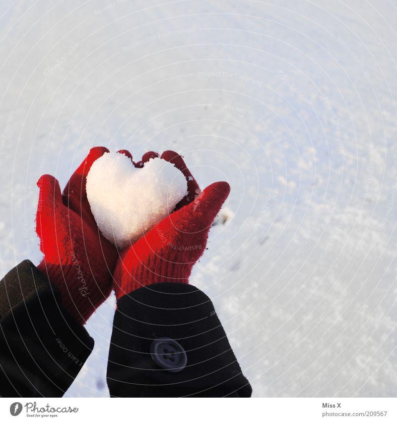 Kaltes Herz Mensch Jugendliche Hand weiß rot Winter Liebe kalt Schnee Gefühle Stimmung Eis Geschenk Frost Hoffnung