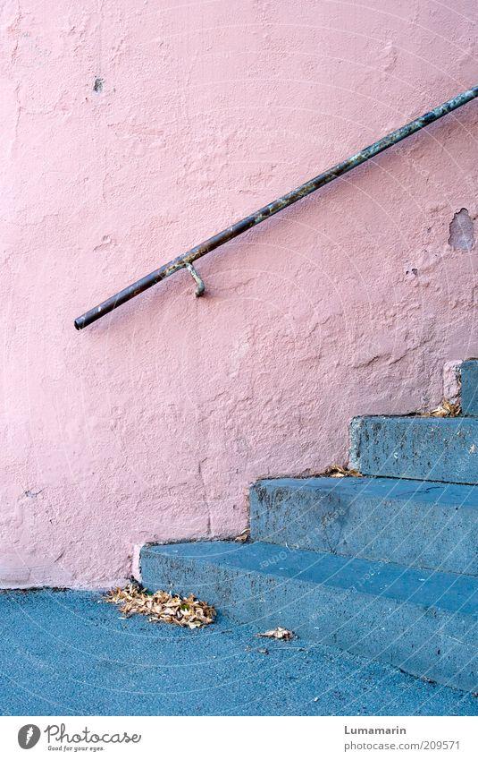 Rosige Zeiten alt blau schön Blatt Farbe kalt Wand grau Wege & Pfade Gebäude Mauer Metall Stimmung hell rosa Treppe
