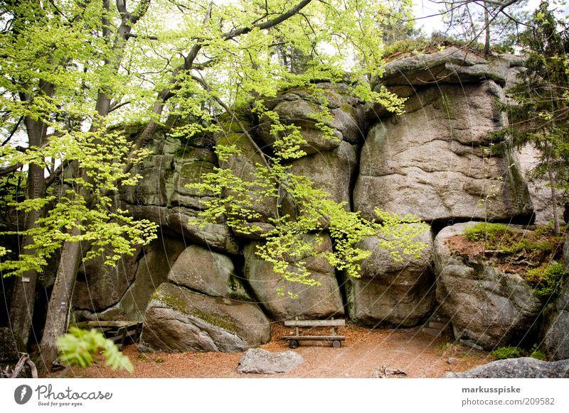 weißmainfelsen fichtelgebirge Natur Baum Sommer Ferien & Urlaub & Reisen Ferne Wald Freiheit Berge u. Gebirge Landschaft Umwelt Stein Ausflug wandern Felsen