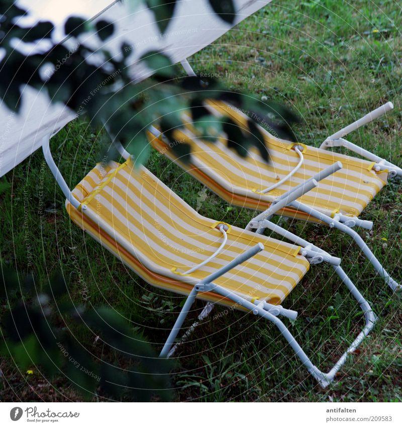 Platz im Grünen Natur grün Pflanze Sommer Ferien & Urlaub & Reisen gelb Erholung Gras Garten Zeit Tourismus Freizeit & Hobby Zweig Liegestuhl Sommerurlaub