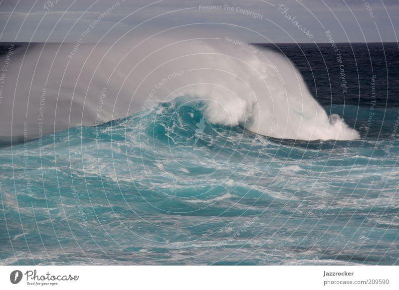 Atlantic Wave Natur Wasser Meer grün blau Sommer Ferien & Urlaub & Reisen Freiheit Wellen Wind Umwelt Sturm türkis Brandung Gischt Wellengang