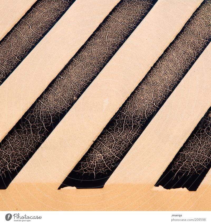 Zebra weiß schwarz Stil Linie Hintergrundbild Design kaputt einfach einzigartig Streifen außergewöhnlich Verfall diagonal gestreift Muster