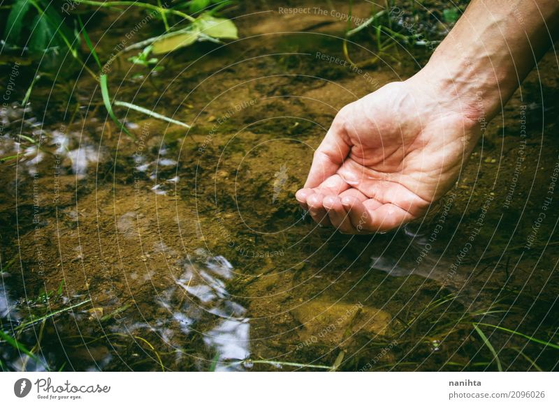 Mensch Natur Ferien & Urlaub & Reisen Mann Pflanze grün Wasser Hand Erwachsene Umwelt kalt Gesundheit natürlich Freiheit braun maskulin