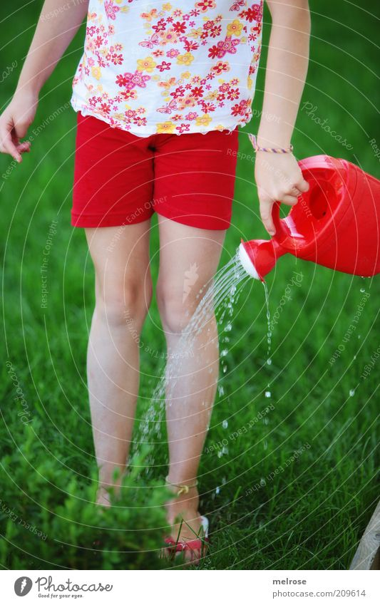 Sommer 2010 Mädchen Mensch Flipflops Gießkanne Bewegung genießen Glück grün rot Zufriedenheit Shorts sommerlich Wasserstrahl Wassertropfen Gartenarbeit kindlich