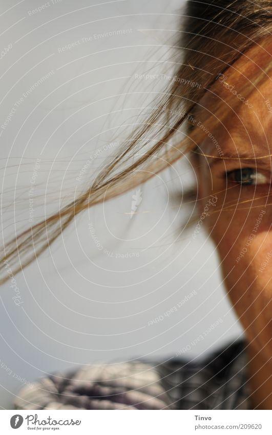 Miss Gestimmt Frau Auge feminin Bewegung Haare & Frisuren Kopf Erwachsene Wind fliegen beobachten Hemd brünett Wange kariert Anschnitt Haarsträhne