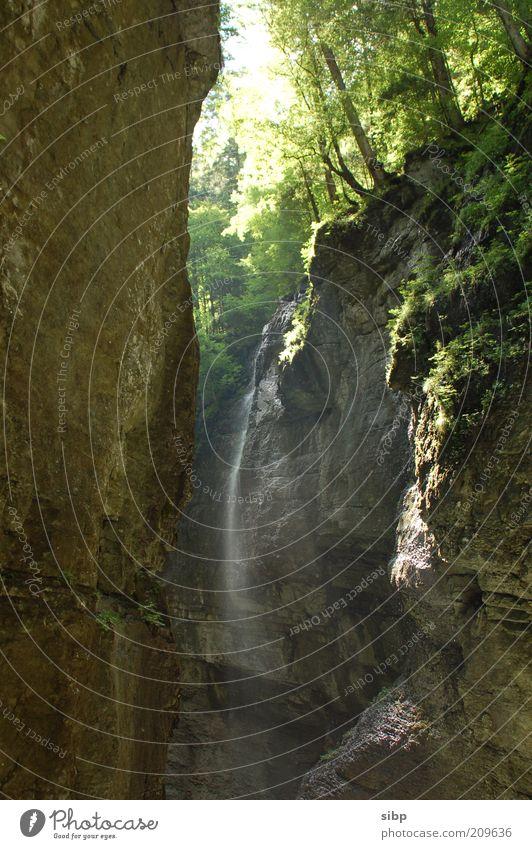 Steile Idylle Natur Wasser grün Sommer ruhig Wald Erholung Berge u. Gebirge Umwelt Stein Felsen Alpen Idylle feucht entdecken genießen