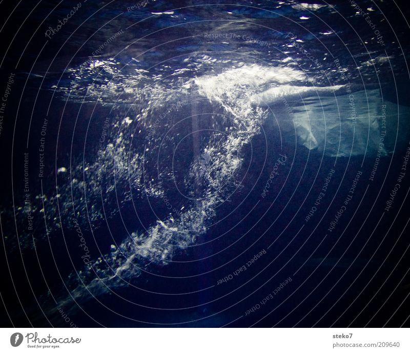 Pinguin Leben Luft Wasser tauchen Wasserblase sprudelnd Eisberg blau-weiß frisch kalt Farbfoto Unterwasseraufnahme Menschenleer Textfreiraum unten