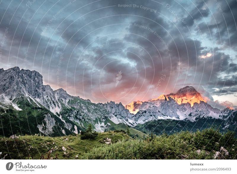 alpenglühen Natur Pflanze Sommer grün Landschaft rot Wolken Berge u. Gebirge grau Felsen wandern Gipfel Alpen Dachsteingruppe