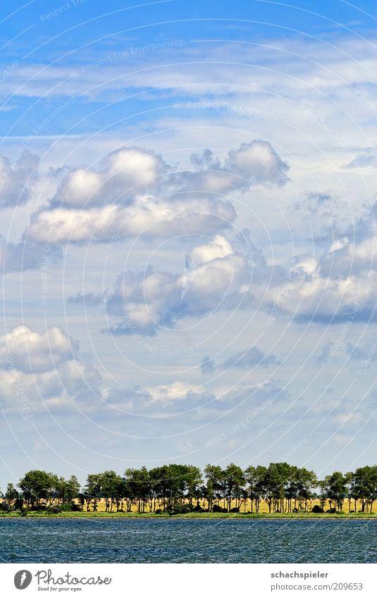 Wolken über Rügen Natur Himmel weiß Meer blau Sommer Landschaft Küste Umwelt Ostsee Schönes Wetter
