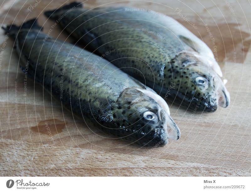 Heut gibts Kalt Ernährung Tier Tod Lebensmittel frisch Fisch Fisch lecker Abendessen Bioprodukte 2 Forelle