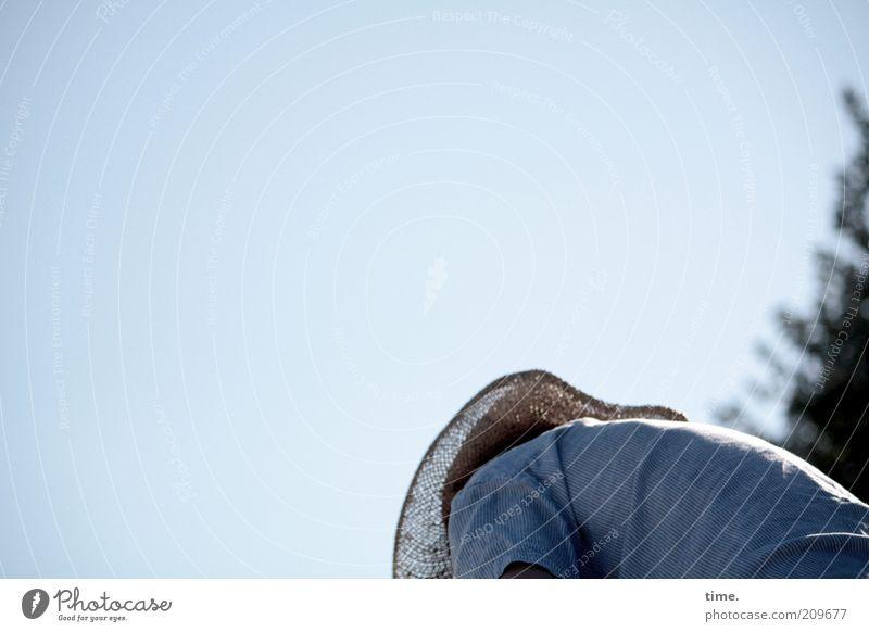 Badesachen einpacken Himmel Mann blau Baum Sommer Erwachsene Rücken maskulin Hut Hemd Schönes Wetter Abenddämmerung Blauer Himmel Faltenwurf gebeugt bücken