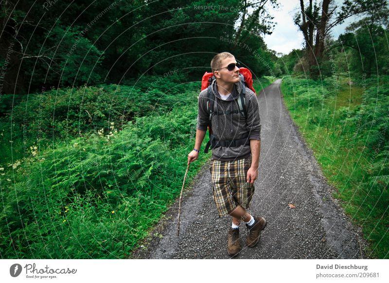 Das Wandern ist des Müllers Lust Mensch Natur Jugendliche Ferien & Urlaub & Reisen grün Baum Sommer Pflanze Erwachsene Wald Landschaft Frühling Wege & Pfade