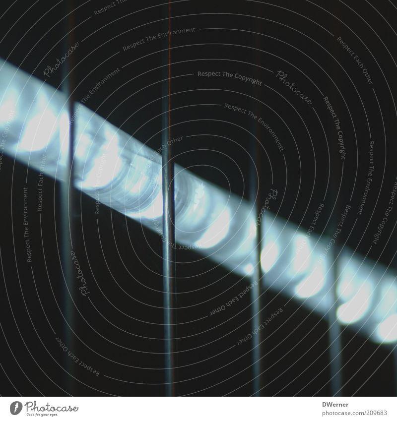 Lichtschlauch schön weiß blau schwarz Lampe dunkel hell dünn leuchten hängen Gitter Leuchtdiode Bauzaun Veranstaltungsbeleuchtung
