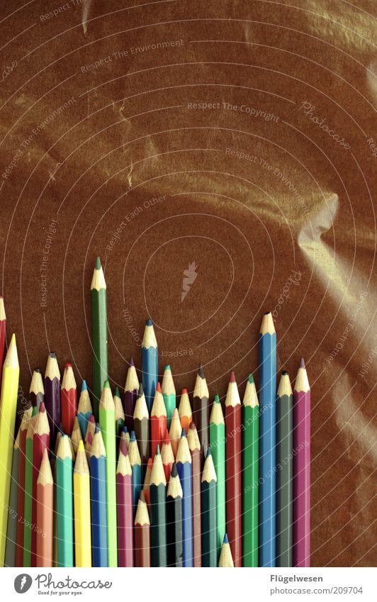 Gutes anstiften Freude Spielen Holz Stil Farbstoff braun Freizeit & Hobby lernen Papier Bildung viele malen zeichnen Lebensfreude Schreibstift Inspiration