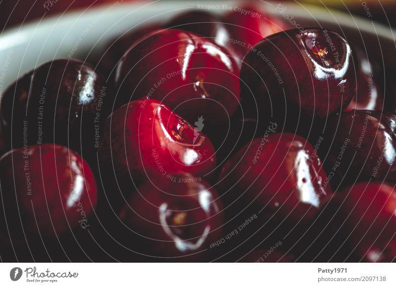 Kirschen rot Gesundheit Lebensmittel Frucht Ernährung frisch genießen rund lecker rein Bioprodukte Schalen & Schüsseln Vegetarische Ernährung Diät Fasten saftig