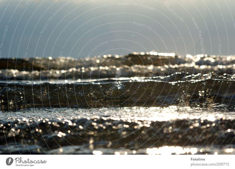 Die perfekte Welle Umwelt Natur Landschaft Urelemente Wasser Himmel Wolkenloser Himmel Horizont Sommer Schönes Wetter Wellen Küste Ostsee Meer hell nah nass