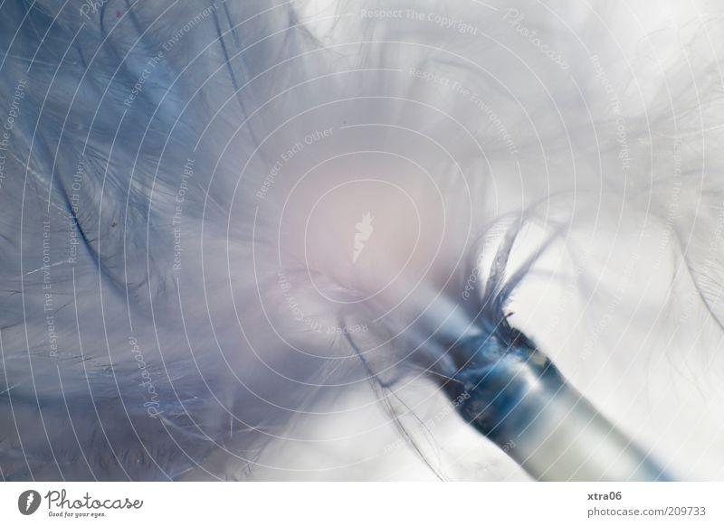 feather weiß blau hell weich Feder Dekoration & Verzierung zart außergewöhnlich Kunststoff leicht Leichtigkeit Makroaufnahme künstlich hell-blau